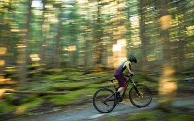 Las Mejores Bicicletas de Montaña Baratas