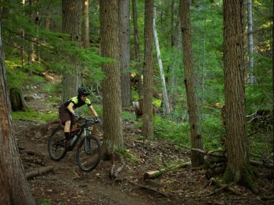 bicicleta montaña barata